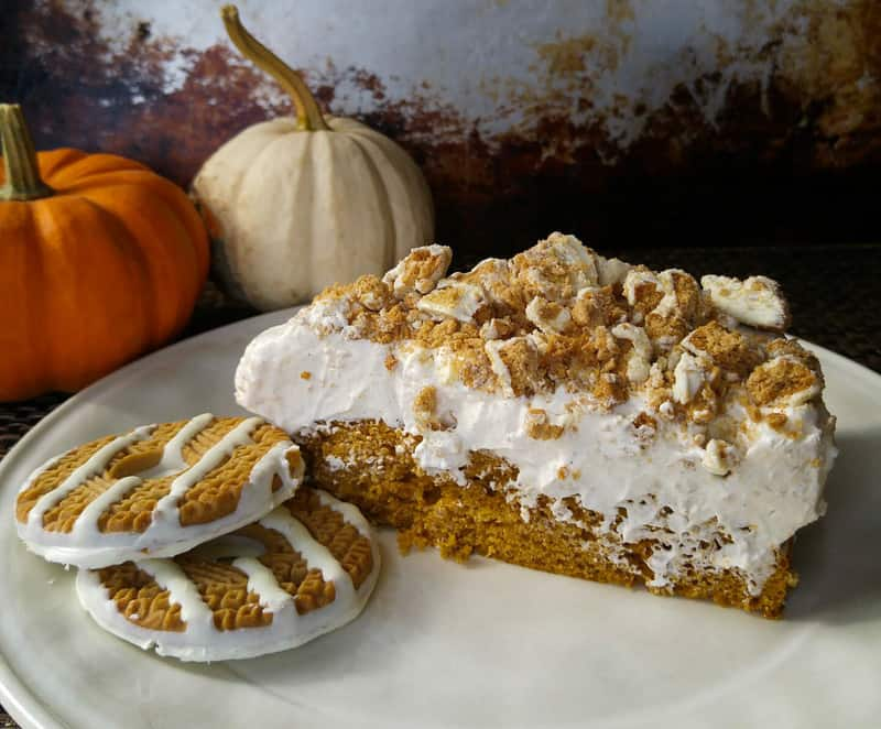 Pumpkin Spice No Bake Cheesecake Cake - Tornadough Alli
