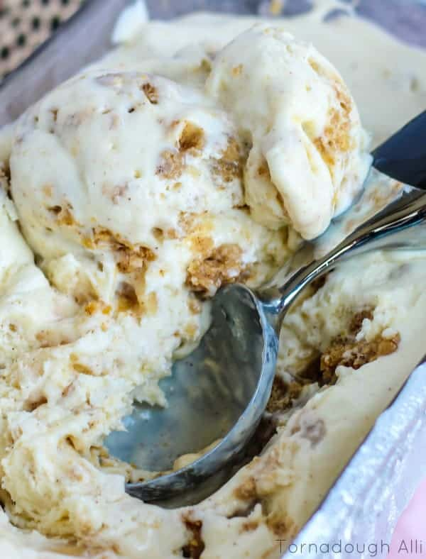 ice cream scoop in Apple Crisp ice cream