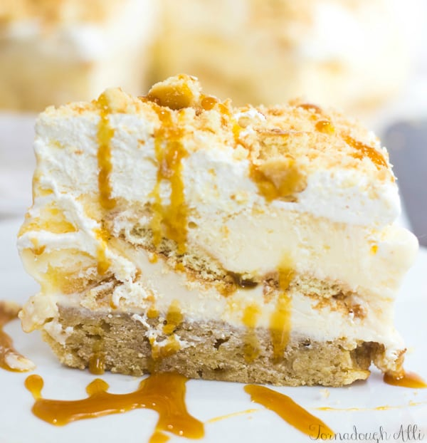 Side view of ice cream cake drizzled with caramel