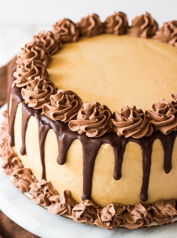Chocolate Peanut Butter Torte Cake