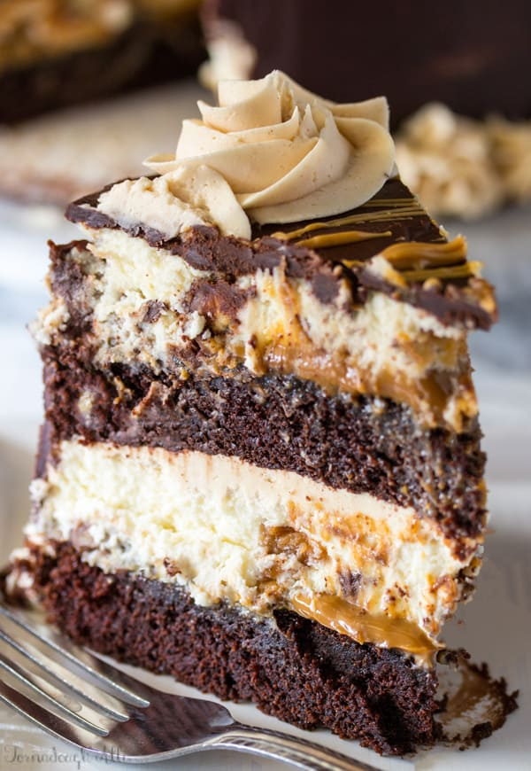 Slice of Copycat Cheesecake Factory Reese's Peanut Butter Chocolate Cake Cheesecake on white plate with fork