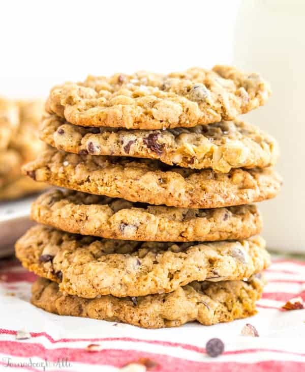 Sea Salt Hazelnut Chocolate Chip Oatmeal Cookies close up and stacked