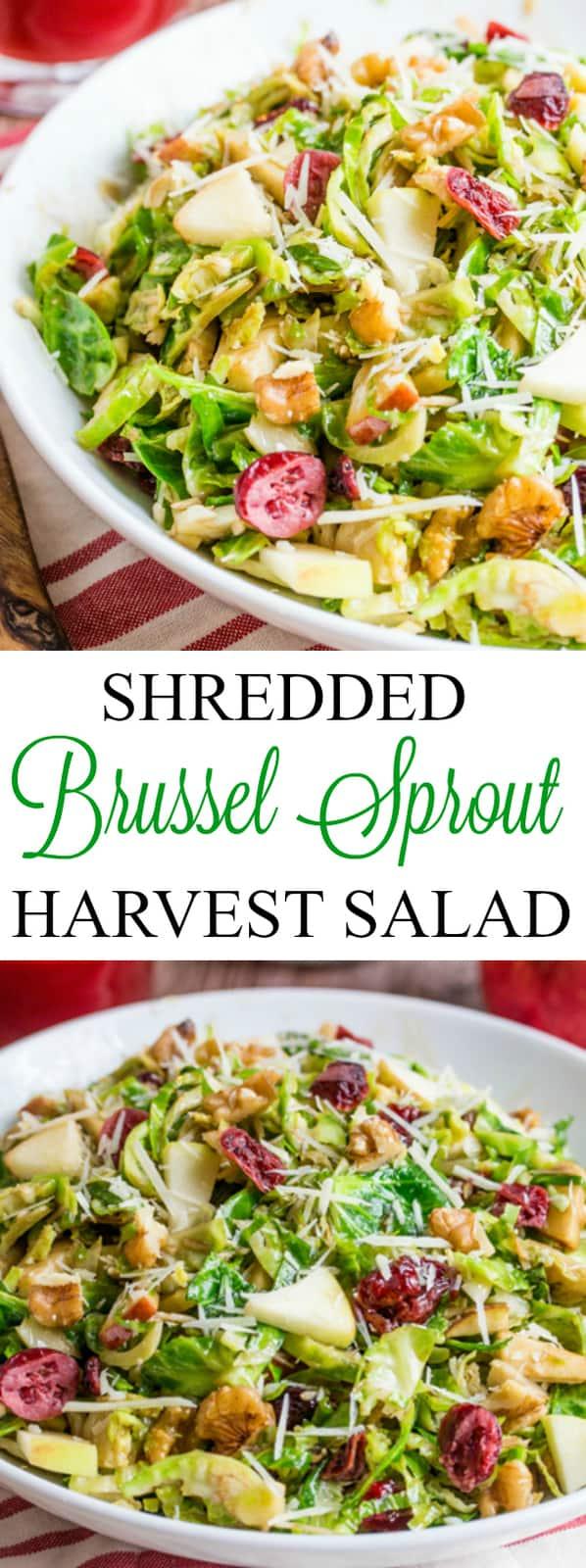 Shredded Brussel Sprout Harvest Salad