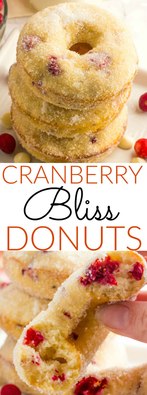 Cranberry Bliss Donuts