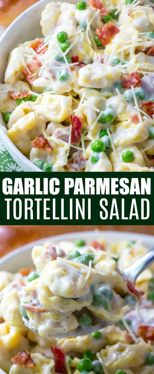 Creamy and flavorful this Garlic Parmesan Tortellini Salad is the perfect Summer pasta dish that you will want at your dinner table night after night. Full of tortellini, bacon, peas and a garlic parmesan sauce this salad is a surefire hit. #pasta #tortellini #bacon #creamy #sidedish #dinnertime #cheese #garlic #parmesan