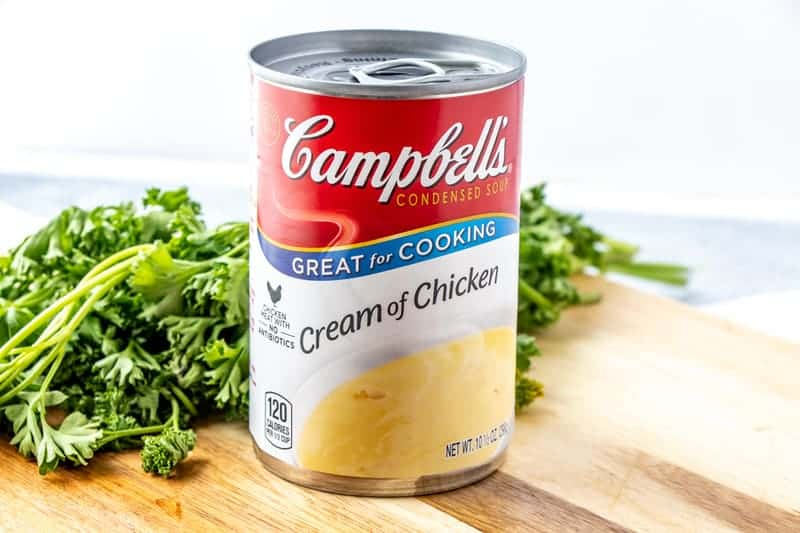 Campbells Cream of Chicken Soup Photo