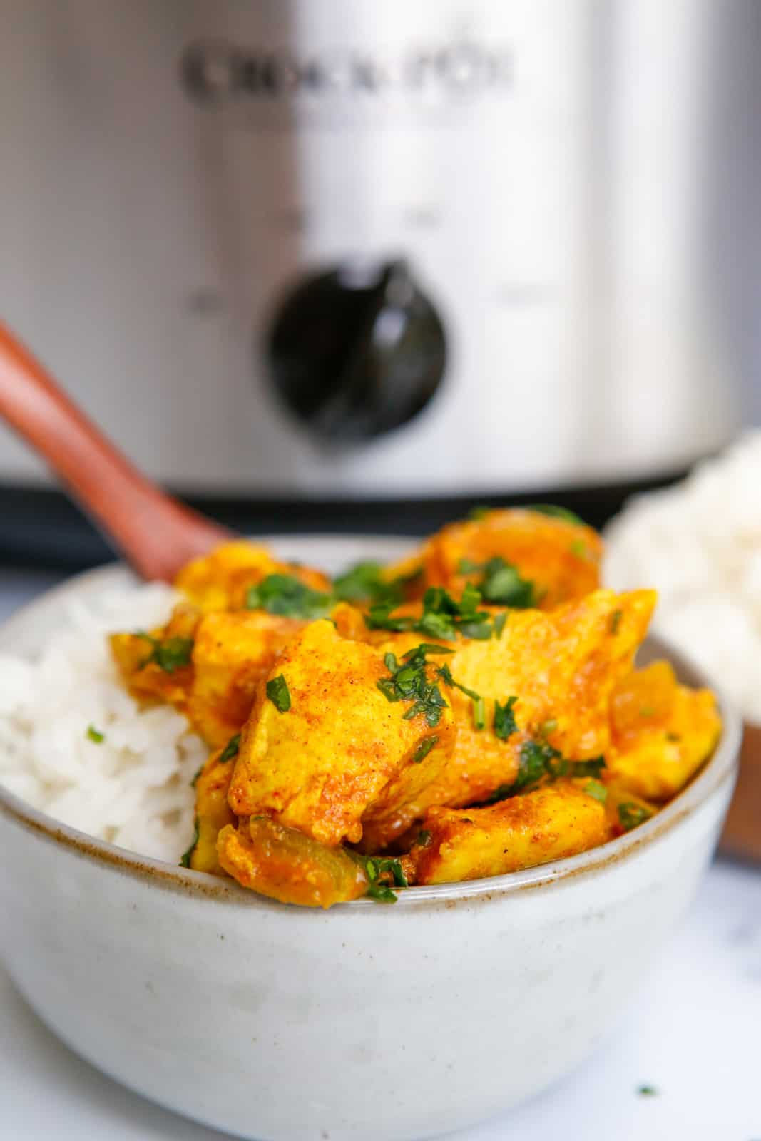 Side view of chicken in bowl with rice