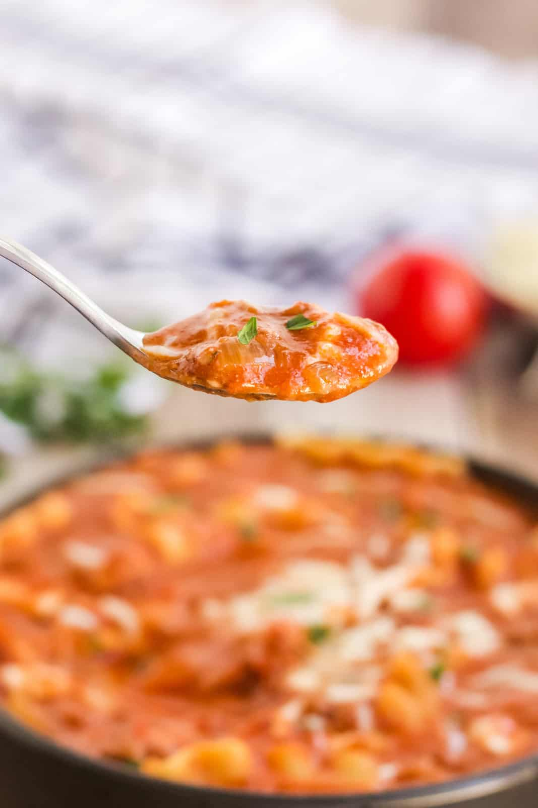 Spoon holding up spoonful of lasagna soup